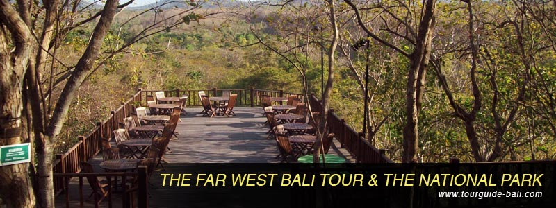 west bali tour the national park